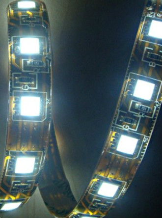 12 Volt Rope Lights All About